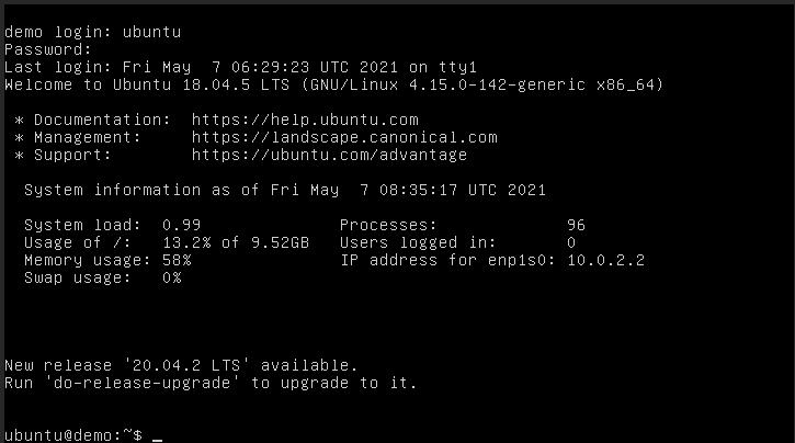 Successful log in to Ubuntu VM